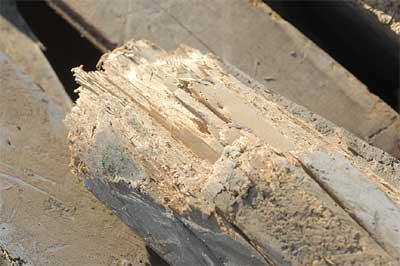 Entsorgung von Altholz - Schultz Recycling Kropp