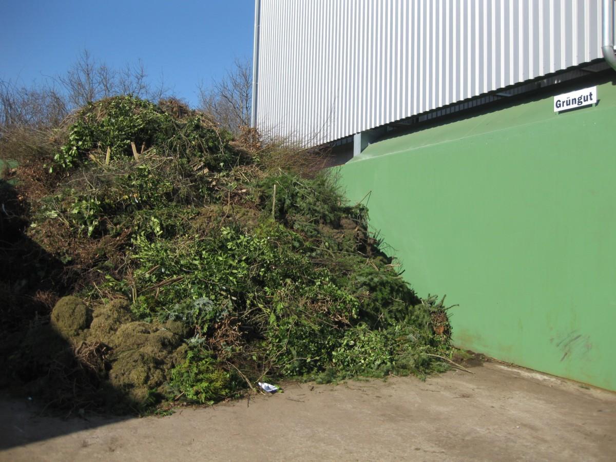 Grünschnitt Entsorgung in Kropp - Schultz Recycling
